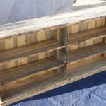 Beetlekill Blue Pine Bookcase