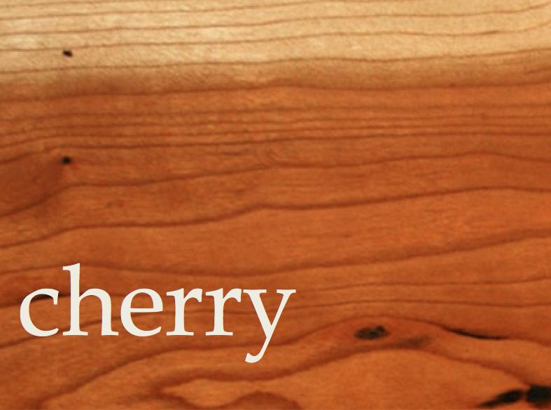American Cherry - Prunus Serotina