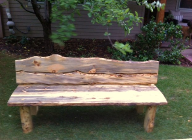 Beetlekill Outdoor Bench
